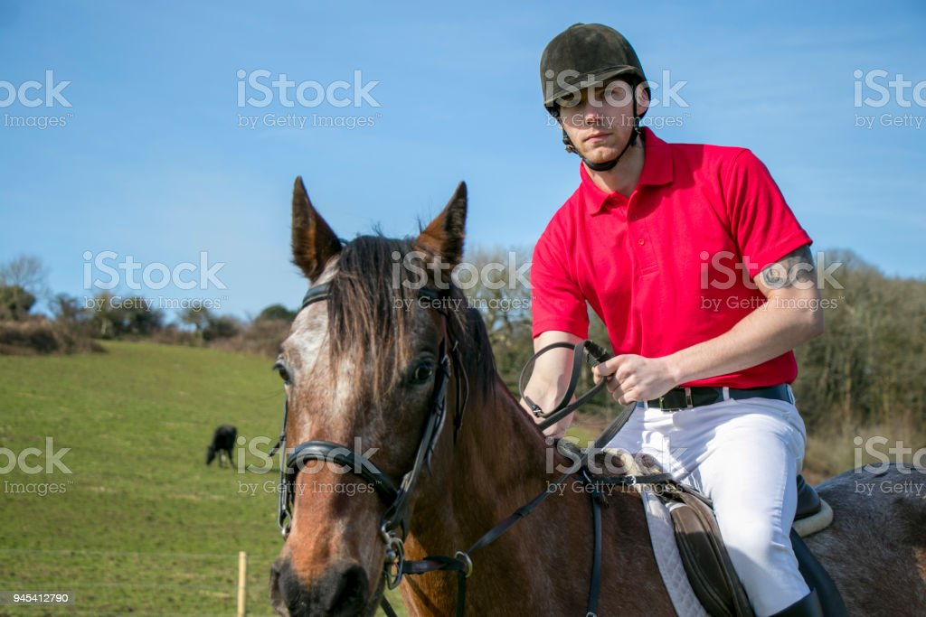 Handsome Horse Rider In Traditional British Riding Clothing Sitting On Green Field Royalty
