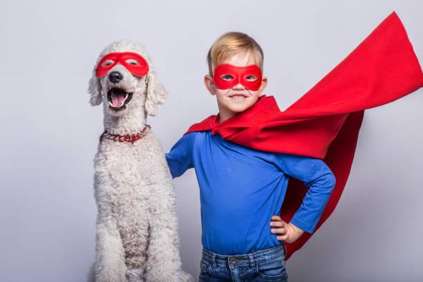 handsome little superman with dog. superhero. halloween. studio portrait over white background - kleine jungen kostüme stock-fotos und bilder