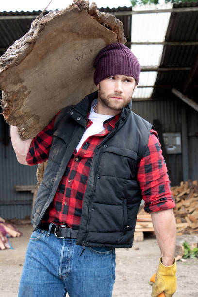 Handsome male lumberjack carries wood log on his shoulder stock photo