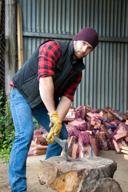 Handsome male lumberjack chops firewood in yard stock photo