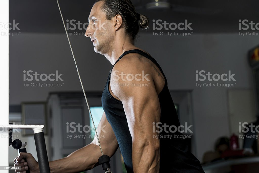 Handsome Man Doing Ttriceps Exercise With Pulley In Gym royalty-free stock photo