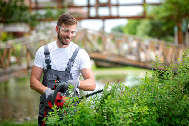 Handsome man dressed in gardening outfit stock photo