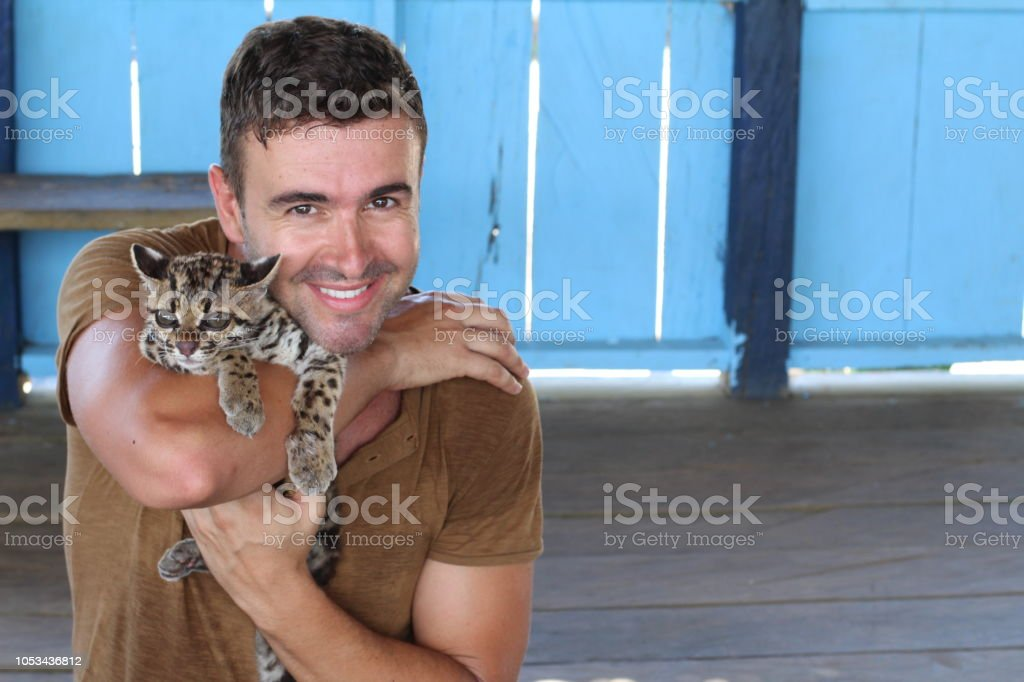 Handsome man holding a baby ocelot stock photo