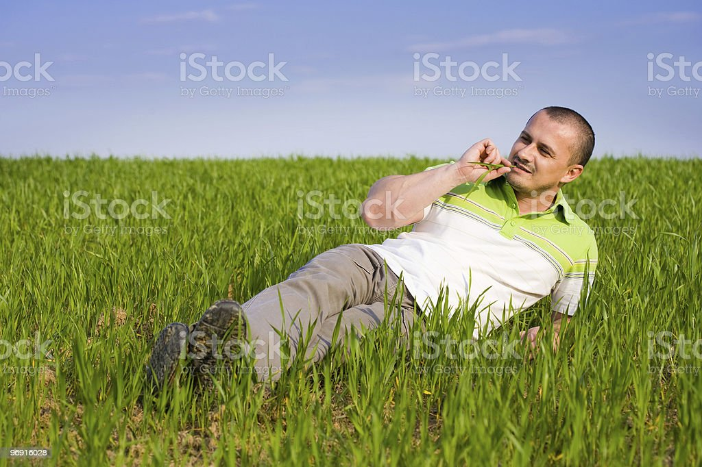 Handsome man in a wheat field royalty-free stock photo