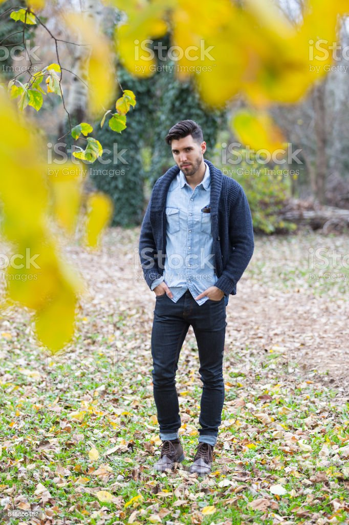 Handsome man in the park. Autumn scenery.yellow leafs stock photo