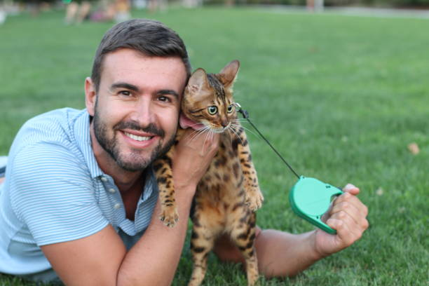 handsome man in the park with his cat - cat leash stock photos and pictures