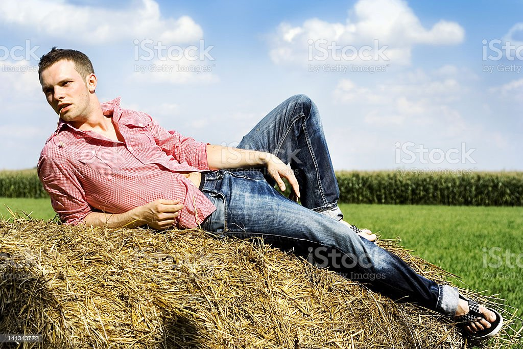 Handsome man on a haystack royalty-free stock photo