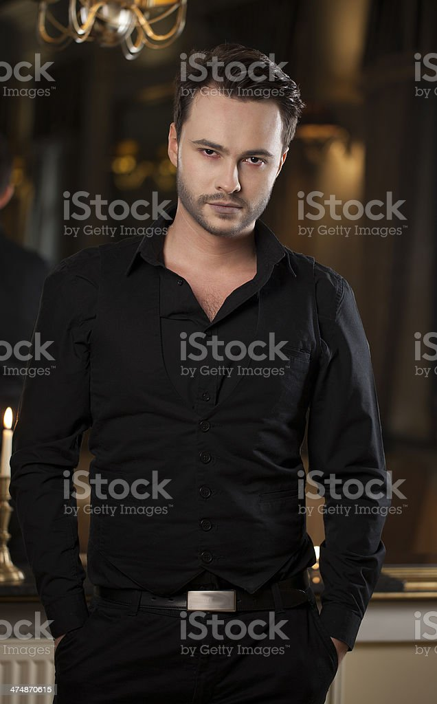 Handsome man posing royalty-free stock photo