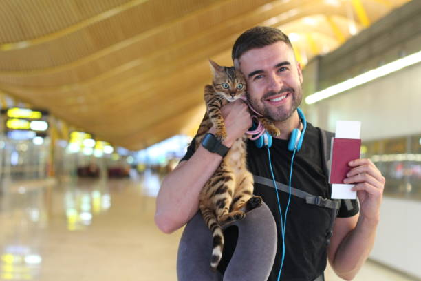 Handsome man traveling with his cat picture id970175826?b=1&k=6&m=970175826&s=612x612&w=0&h=eppdvyfcf8rilt 4lyia6gubaivgcszzcu55fttnupw=