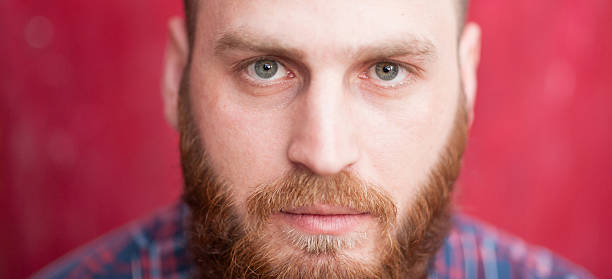 handsome man with beard looking at camera stock photo