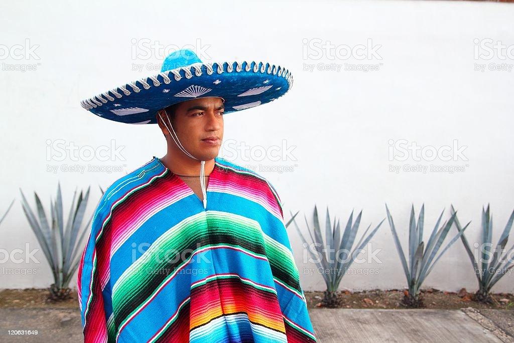 handsome mexican man charro hat serape agave stock photo