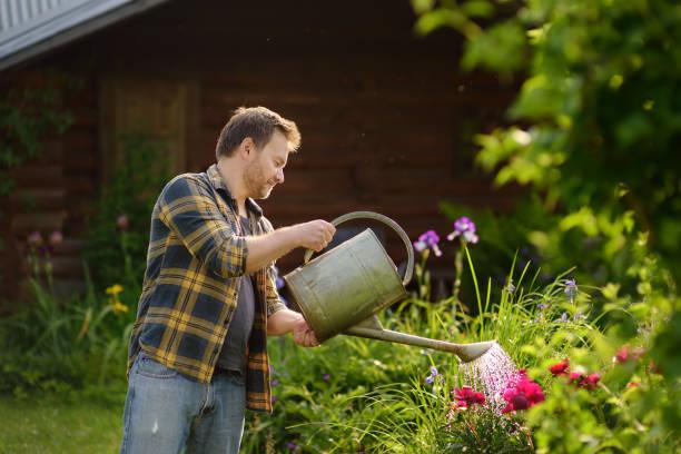 Hombre guapo edad media regando las flores en el patio en verano. - foto de stock