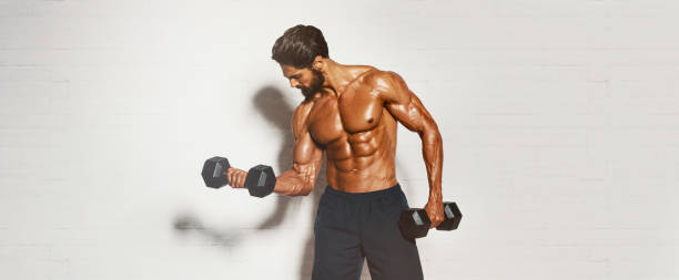 Handsome Muscular Men, Bodybuilder Lifting Weights. copy space stock photo