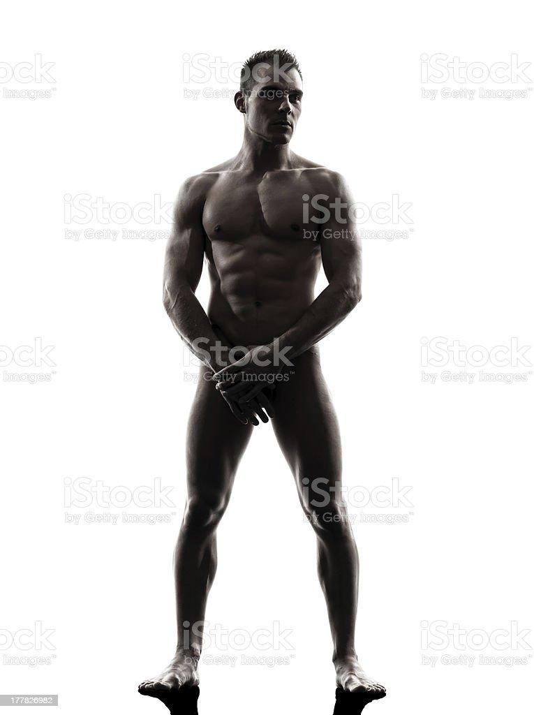 Gut Aussehend Muskuläre Nackter Mann Stehend Volle Länge Stock ...