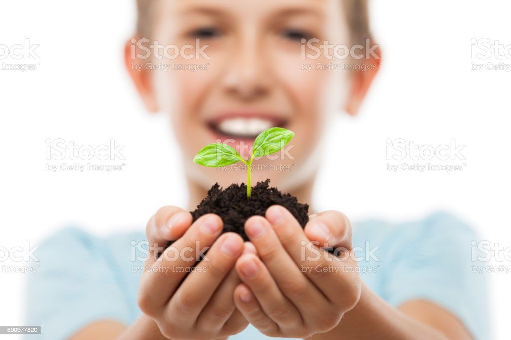 Handsome smiling child boy holding soil growing green sprout leaf stock photo