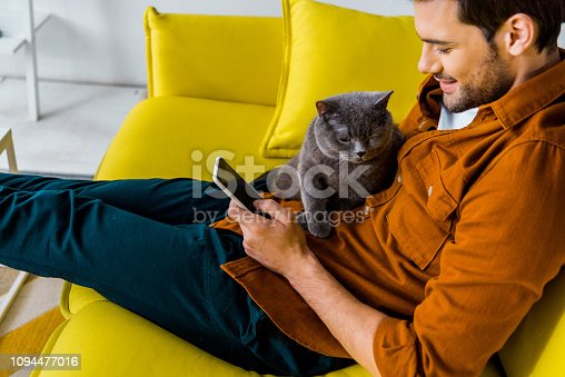 handsome smiling man using smartphone while sitting on sofa with cat