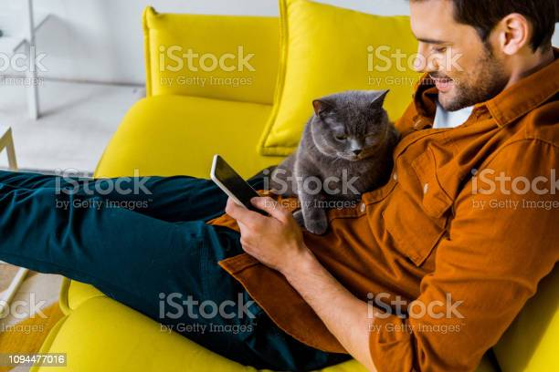 Handsome smiling man using smartphone while sitting on sofa with cat picture id1094477016?b=1&k=6&m=1094477016&s=612x612&h=ruw9fiuk7rgfrwifpxwpdbg92wzyk8rffmwozmnezhk=