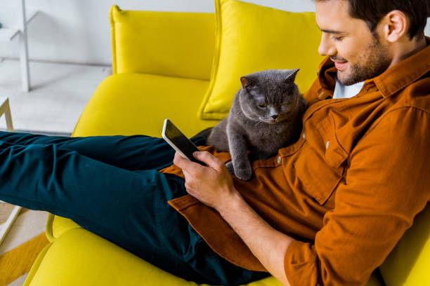 Handsome smiling man using smartphone while sitting on sofa with cat picture id1094477016?b=1&k=6&m=1094477016&s=612x612&w=0&h=kj6kvtpo1bde hkoiyo810umqxfsz1c1tacn4csiy4e=