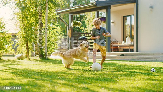 istock Handsome Young Boy Plays Soccer with Happy Golden Retriever Dog at the Backyard Lawn. He Plays Football and Has Lots of Fun with His Loyal Doggy Friend. Idyllic Summer House. 1285465143