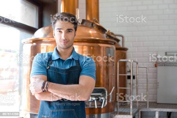 Handsome Young Male Bartender Standing In Microbrewery Stock Photo - Download Image Now