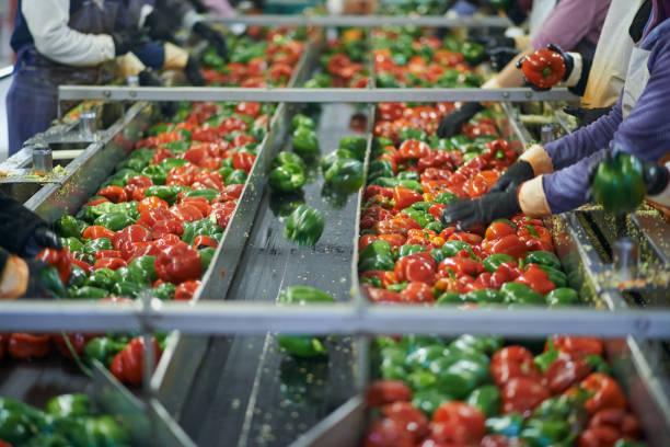 Hands-on sur le sol de l'usine - Photo
