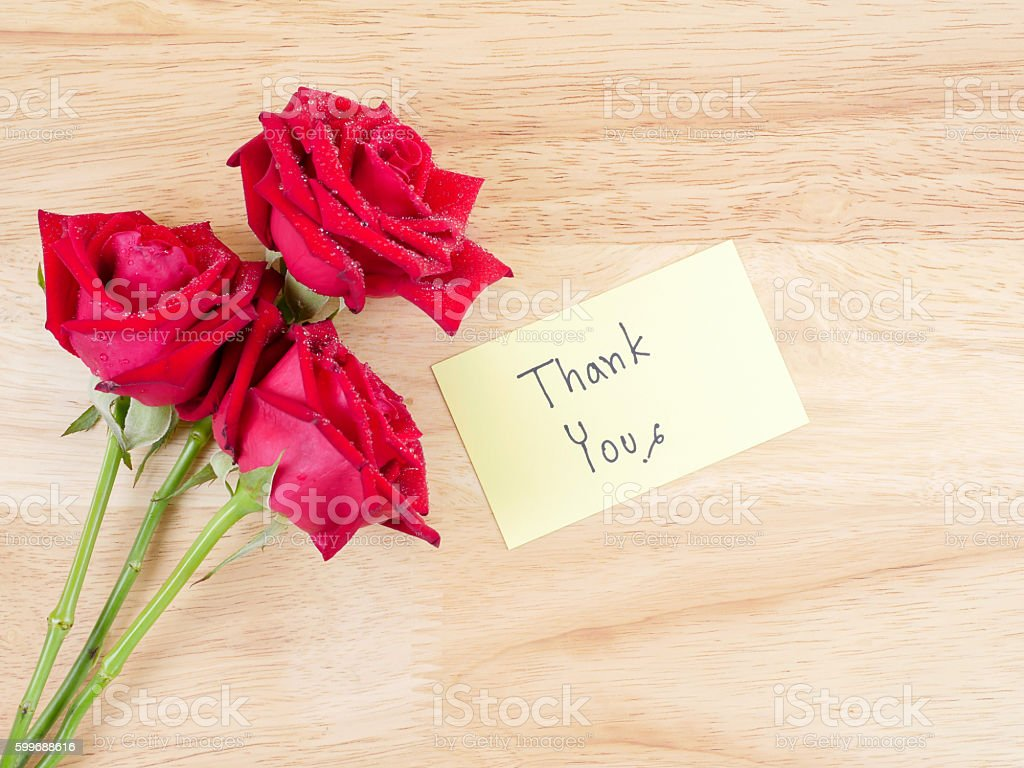 Handwriting Thank You And Red Rose 1 Stock Photo & More Pictures of ...
