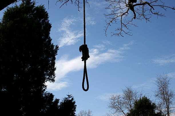 hang 'em high horizontal - noose stock photos and pictures