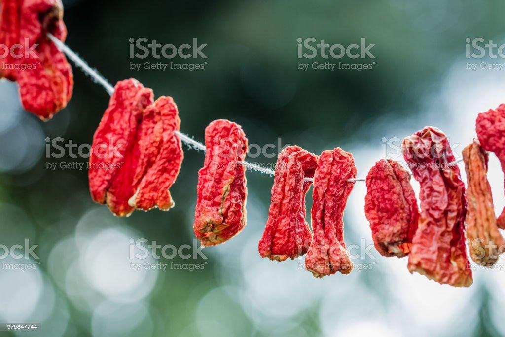 Trockenen Chilischoten gehängt - Lizenzfrei Abnehmen Stock-Foto