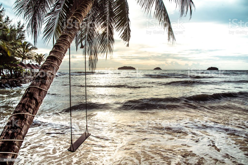 hanging a swing on a palm tree by the sea stock photo