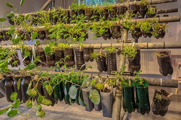 hanging baskets vegetable garden - pet bottles bildbanksfoton och bilder