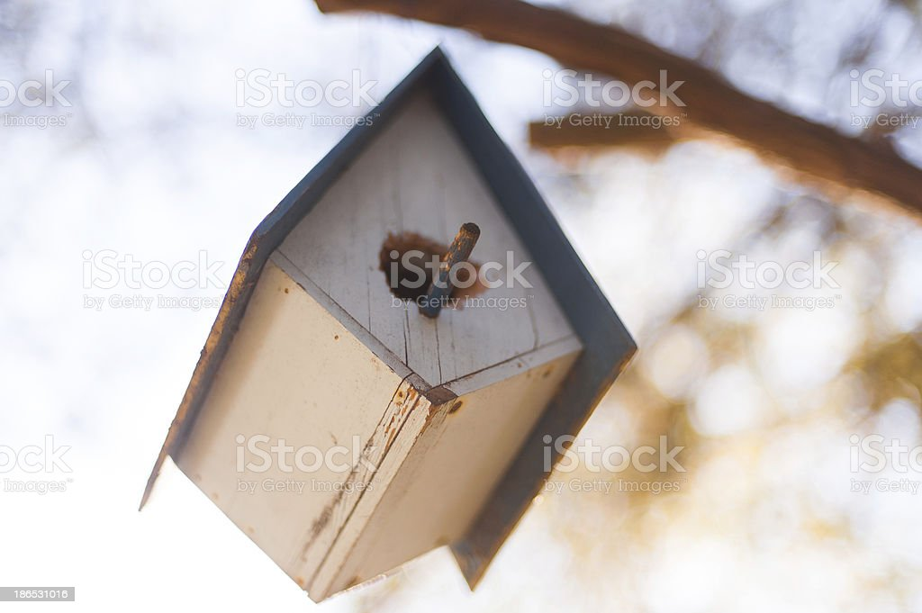 hanging birdhouse up in a tree stock photo