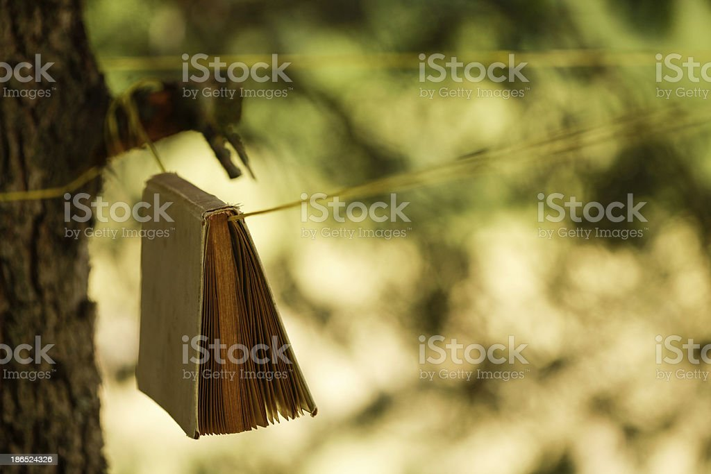 Hanging book in nature royalty-free stock photo