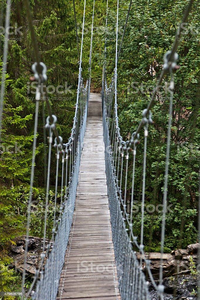Hanging Bridge across a Creek in the Swiss Alps stock photo