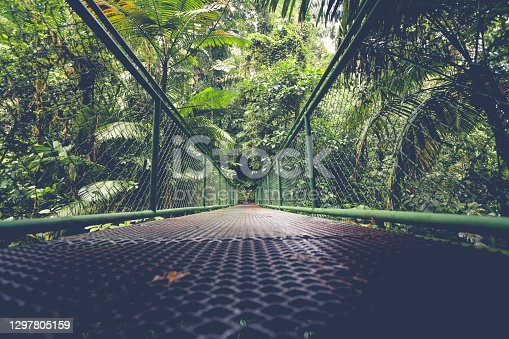istock hanging bridge in the rainforest of costa rica 1297805159