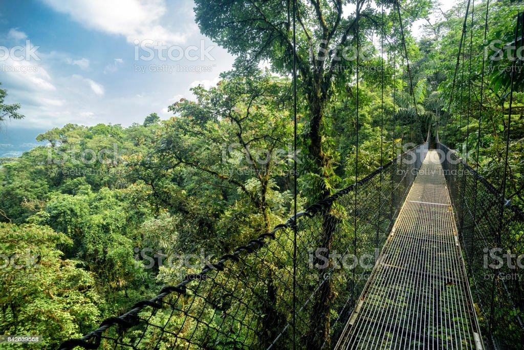 Puente colgante - foto de stock