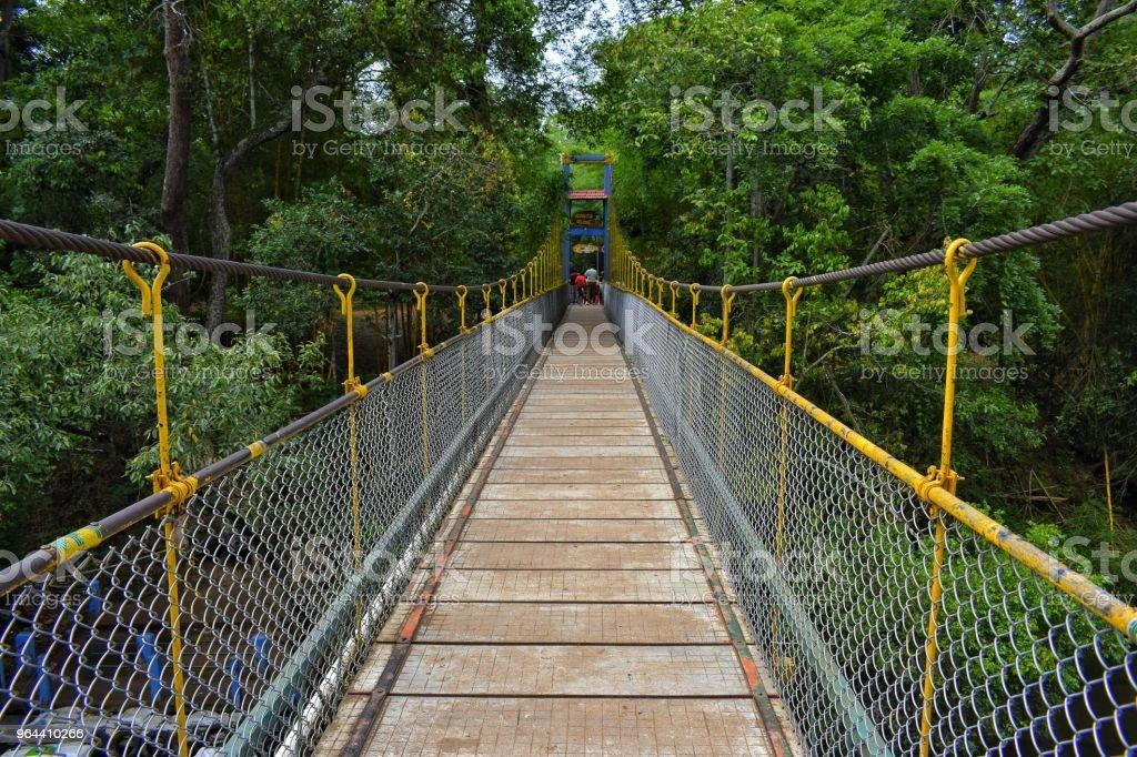 Hanging Bridge - Royalty-free Adventure Stock Photo