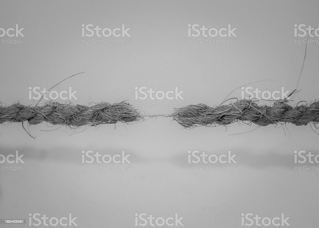 Hanging by a Thread black and white stock photo