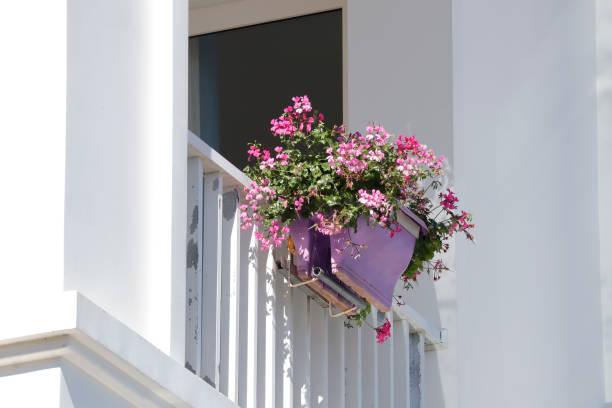 Hängender Blumentopf auf dem Balkon – Foto