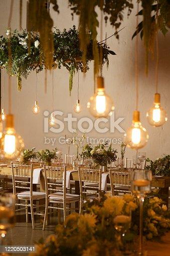 istock Hanging Garden and Light Bulbs Wedding Reception 1220503141