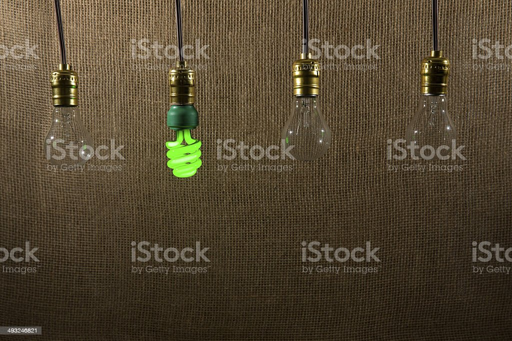 Hanging Green CFL and Incandescent Bulbs stock photo
