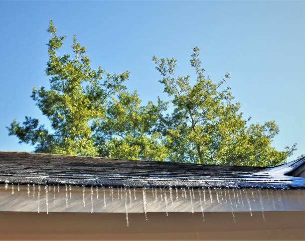 Hanging Icicles in Houston stock photo