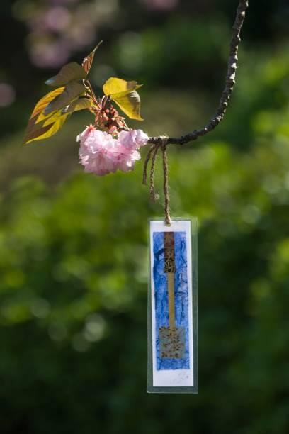 Poema japonés colgante, haiku, de cerezo. - foto de stock