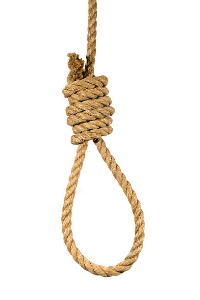 hanging noose on white background - noose stock photos and pictures