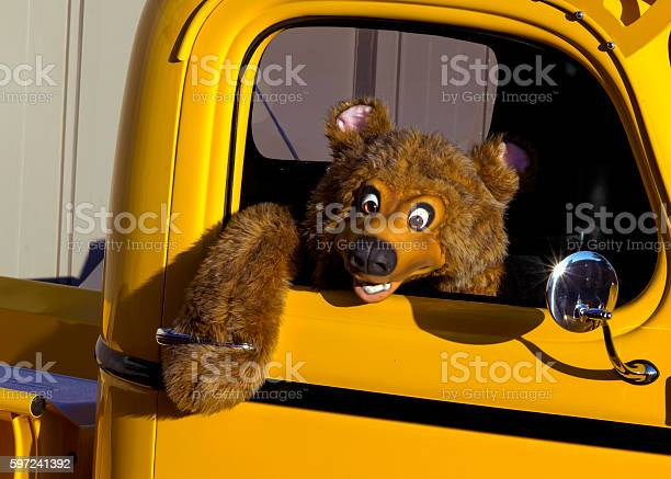 Hanging Out A stuffed bear hanging out an antique truck window at a yearly town cruise in. Bear Stock Photo