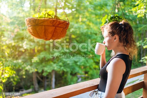 istock Hanging potted plants in summer with woman standing on porch of house in morning wooden cabin cottage drinking tea or coffee 1185912031
