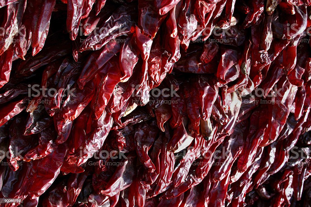 hanging red peppers stock photo