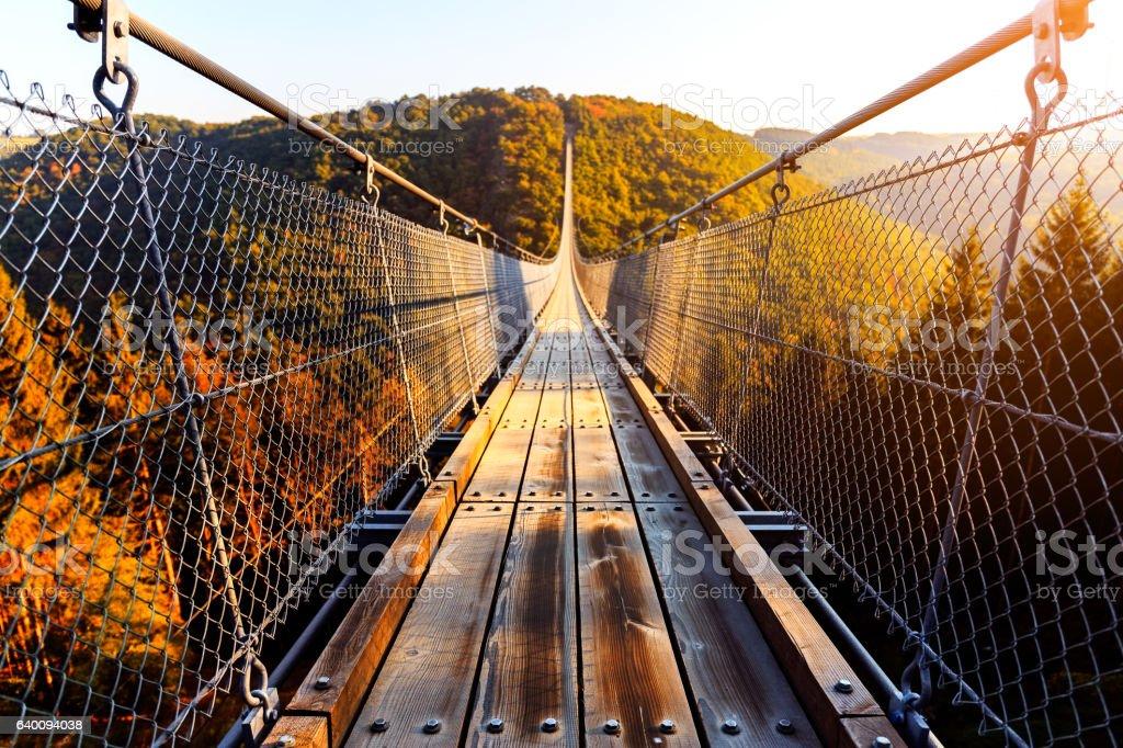 Hanging rope bridge Geierlay stock photo