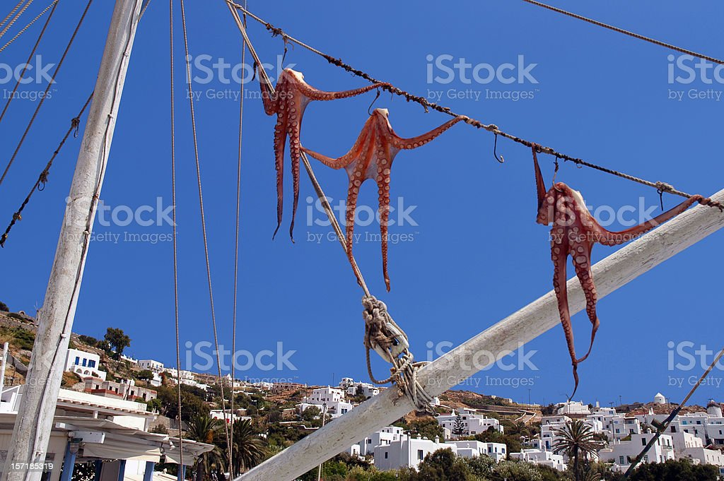 Hanging Seafood Octopus Trio in Mykonos Greece stock photo