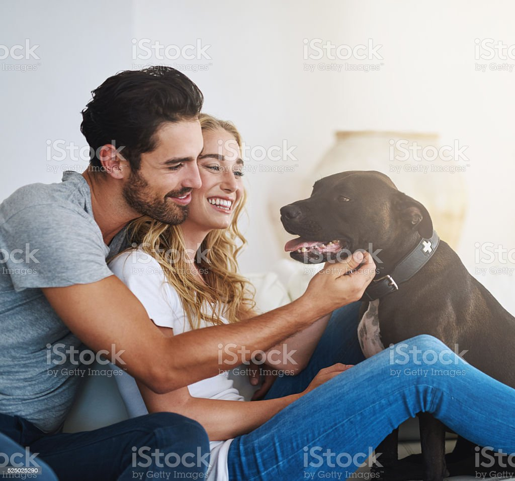 Hanging with their home-dog stock photo