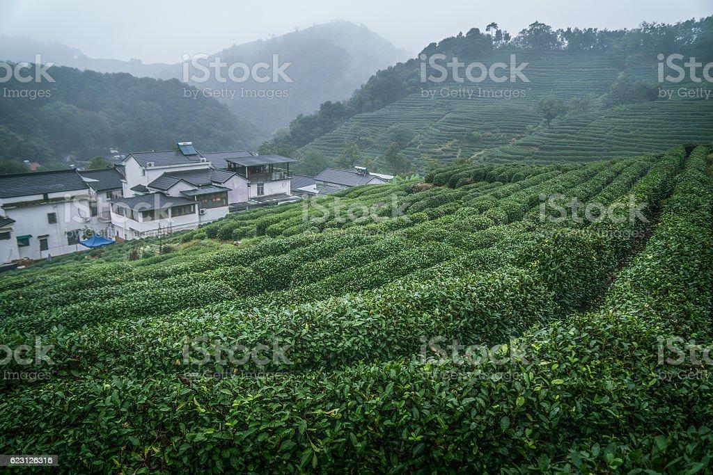 Hangzhou city stock photo